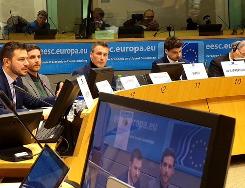 Focus on demographic challenges: FAFCE's interventions to the European Economic and Social Committee and the Committee of the Regions